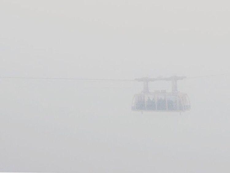Looking through the fog... Fog Blue Mountains National Park Blue Mountains Outdoors National Park Railway Scenic Railway Landscape Blured Moments Grey Sky And Raindrops EyeEm EyeEm Best Shots EyeEm Nature Lover EyeEmBestPics Eyeemphotography EyeEm Best Shots - Landscape