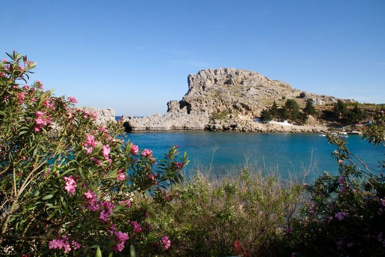 Bay Beauty In Nature Cliff Flower Growth Lindos Mountain Nature No People Outdoors Plant Postcard Rhodes Ródos Saint Paul's Bay Sea Sea Side Sea View Seaviews Water