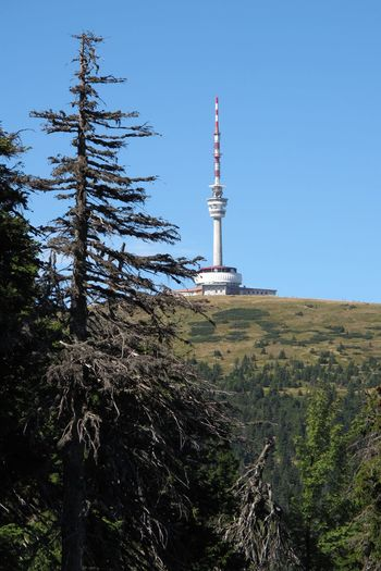 Clear Sky Czech Republic Architecture Broadcasting Built Structure Communication Day Global Communications Jeseniky Mountain Nature No People Outdoors Plant Sky Tall - High Technology Tower Travel Destinations Tree