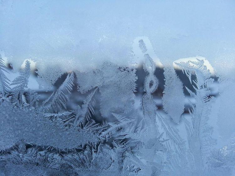 Frozen Window Winter Wonderland Winter