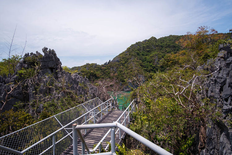 Footbridge against trees and mountains against sky