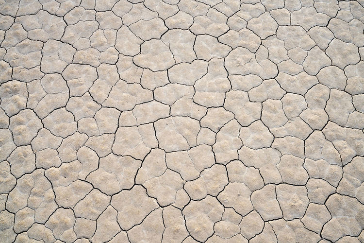 Cracked earth on a playa Arid Climate Backgrounds Barren Climate Cracked Day Drought Dry Environment Extreme Terrain Field Full Frame Land Mud Natural Pattern Nature No People Outdoors Pattern Scenics - Nature Textured