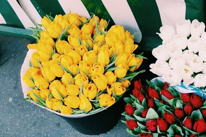 Flowers Monmartre Paris, France  Haroconhache