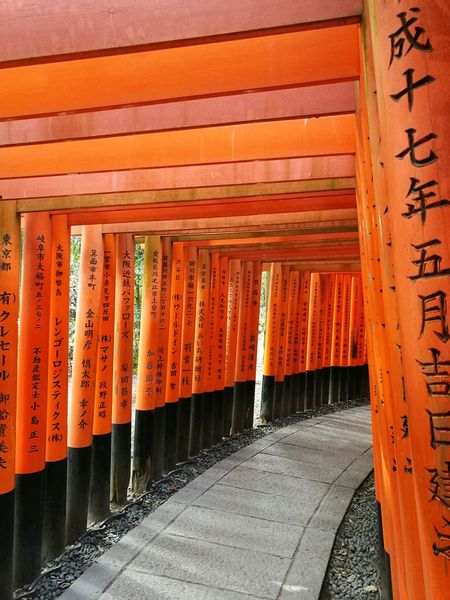 Orange Color Red Sunlight Built Structure Place Of Worship Outdoors No People Architecture Non-western Script Day Cultures Fushimi Inari Shrine Fushimi Inari Kyoto Kyoto Kyoto,japan Japan Shrine Japan Culture