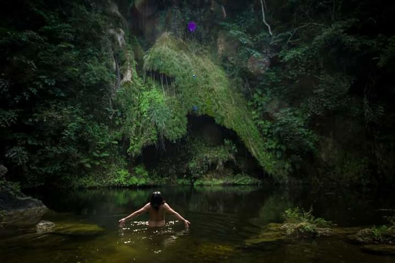 Man This Is Masculinity Tree Water Women Sitting Forest Beauty Swimming Mountain River Mid Adult