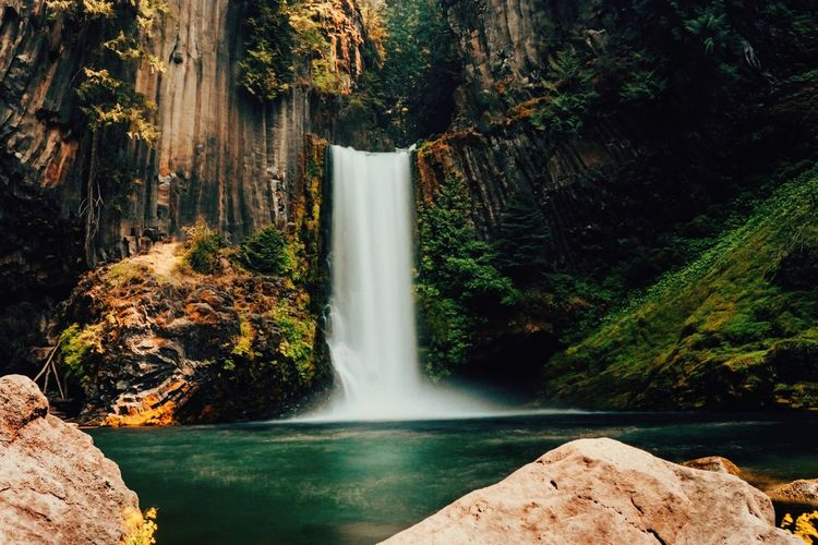 Beautiful Destinations Travel Destinations Milky Way Camping Vacations Hikingadventures Adventure Oregon Water Waterfall Motion Tree Beauty In Nature Flowing Water Scenics - Nature Long Exposure Forest Nature Power In Nature