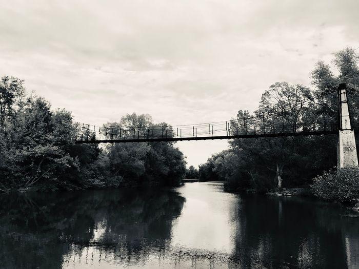 Pont de l'île Tree Plant Sky Water Cloud - Sky Nature Bridge Architecture River No People Built Structure First Eyeem Photo