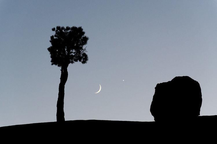 Faces Of EyeEm Moon Nightphotography View Siluet Sky