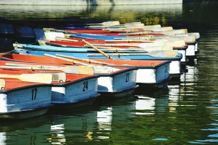 Barque's park