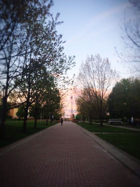 Akron Life Campus Life EyeEmNewHere Daily Walk Outdoors Sunset The Way Forward Walking