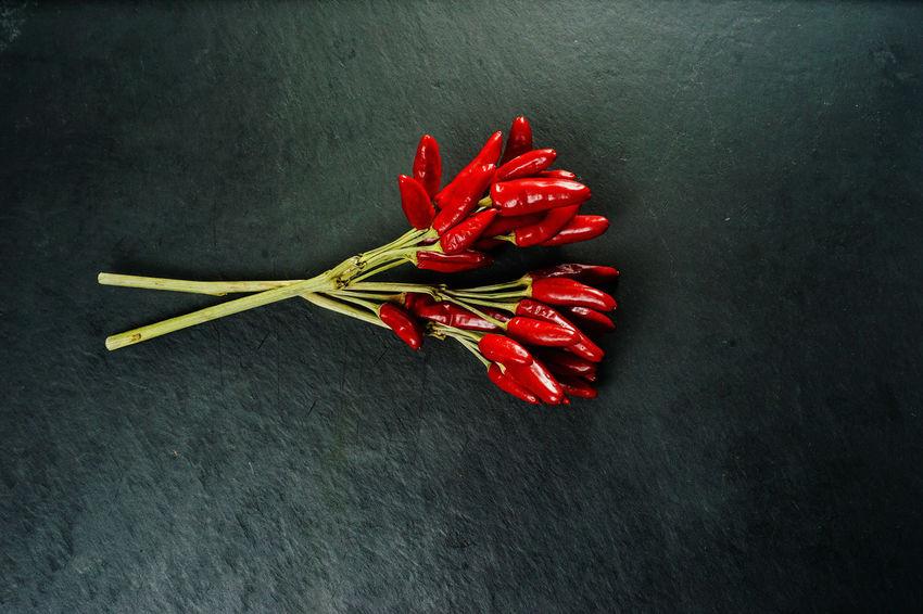 My stillleben series Black Background Chilli Close-up Eyem Best Shots Food Freshness Healthy Eating Peperoni Red Spice Still Life Stilleben