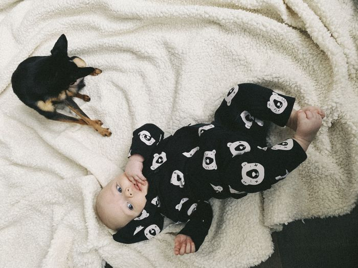 Domestic Relaxation Indoors  Animal High Angle View Animal Themes Furniture Mammal Pets Domestic Animals Bed Lying Down One Person Lying On Back One Animal Animal Representation Toy Childhood Representation Home Interior Innocence Toy Terrier Baby Boy 4 Months Old