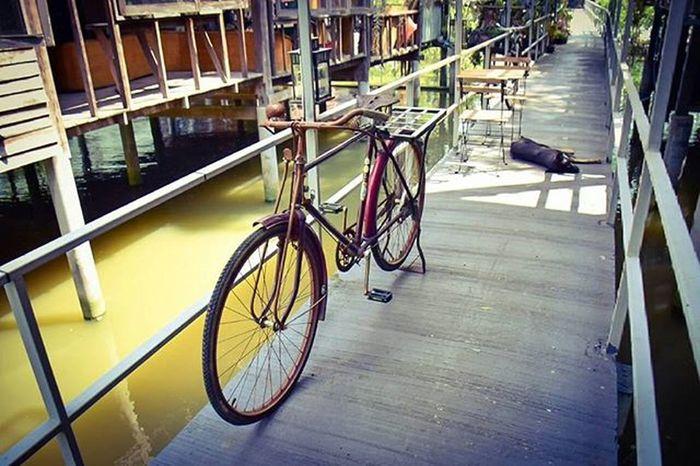 Bangkoktreehouse Coffeeshop Green Chaophraya River Landscape Bangkrachao Thailand Amazingthailand