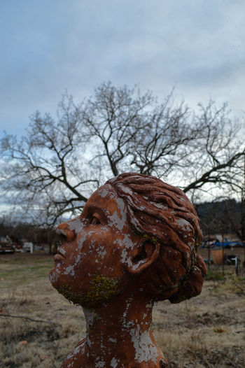 Arid Climate Art Busted Close-up Conciousness  Creativity HEAD Oak Tree Sculpture