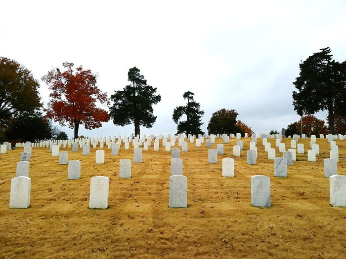 cemetery on a dreary day EyeEmNewHere Grey Arkansas Rainy Days Cemetery Day Outdoors Beach No People Nature Tree