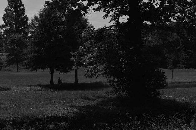 Parks Silhouette Blackandwhite Day Fishing Grass Growth Landscape Monochrome Nature No People Outdoors Scenery Shadow Tranquility Tree