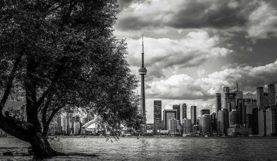 6ix CN Tower - Toronto CN Tower Serenity Toronto Canon Canonphotography Thankyoucanada Toronto Islands EyeEmNewHere