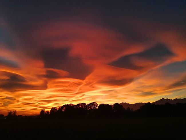 Dramatic Sky Sunset No People Tree Beauty In Nature Nature Silhouette Sky Forest Fire Outdoors Power In Nature Day