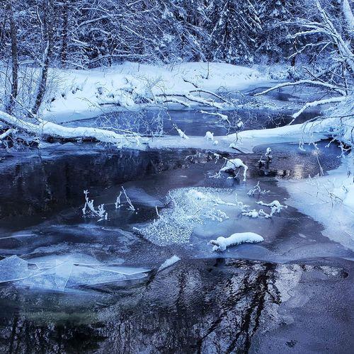 Freezing Winter