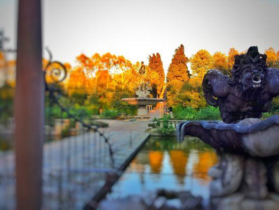 Florence Boboli Garden Italy Sunset Scalpture Garden Fountain The Great Outdoors - 2016 EyeEm Awards