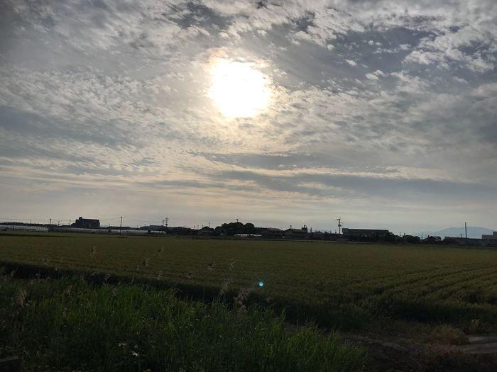 私の世界…故郷 うふふ 私色に染める 我が人生 命尽きるまで 人生 足跡 ここで生まれた 故郷 Sky Cloud - Sky Environment Landscape Field Land Scenics - Nature No People Sunlight Sun Plant Tranquility Beauty In Nature Nature Sunset Rural Scene Agriculture Tranquil Scene Grass Farm