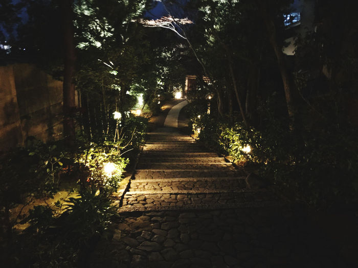 Footpath amidst trees in city at night