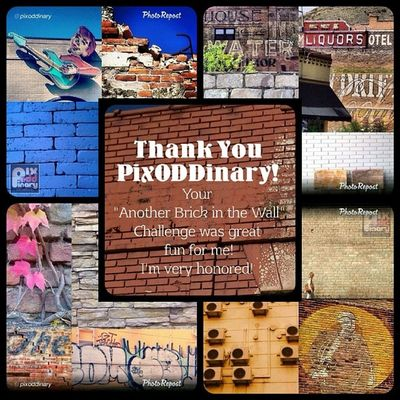 Thank you so very much to everyone at @pixoddinary for the nice features today! How very nice to have been selected so many times!! ◆ TL mine is TL, TR mine are both tops, BL mine is BL and BR mine is BR ◆ Oddly, mine are all signs. Fun challenge. Tag all your shots shot through an ODD lens to Pixoddinary