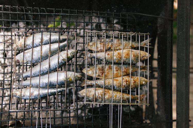 Fish And Chips Grilled Fish Mediterranean  Mediterranean Sea Mediterranean Food Portugal Sardines Grillees Barbecue Fish Food Food And Drink Freshness Grill Grilled Healthy Eating Healthy Food Omega 3 Preparation  Sardines Sardinia
