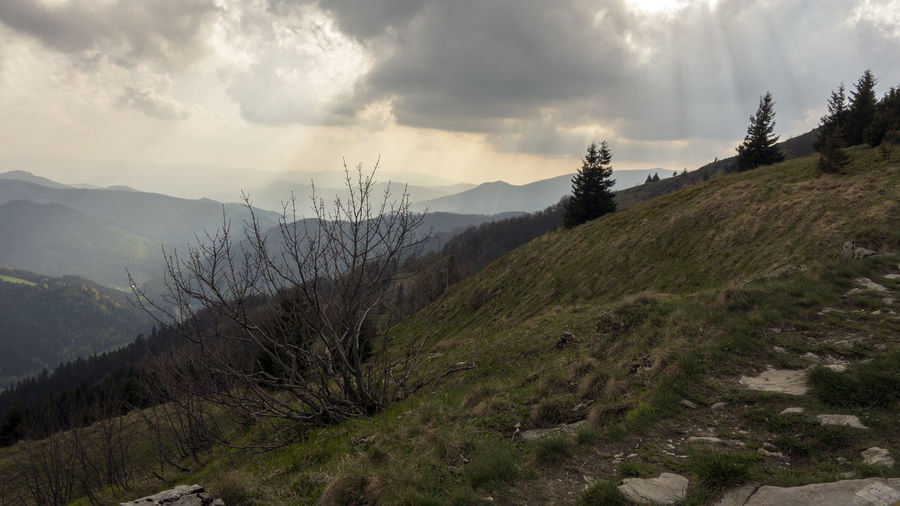 landscape Donovaly Slovakia Velka Fatra Beauty In Nature Cloud - Sky Day Environment Growth Idyllic Land Landscape Mountain Mountain Range Nature No People Non-urban Scene Outdoors Plant Remote Scenics - Nature Sky Tranquil Scene Tranquility Tree Zvolen