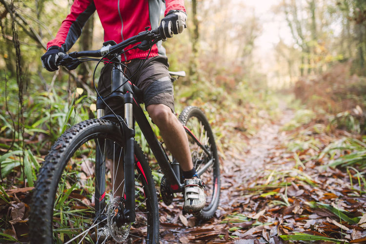 Low section of person riding bicycle in forest