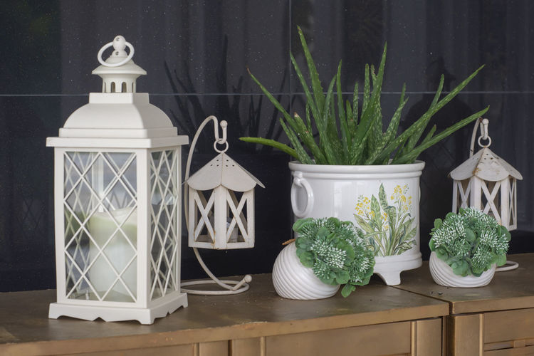 table decoration Plant No People Potted Plant Table Nature White Color Day Art And Craft Growth Still Life Container Green Color Decoration Creativity Outdoors Lantern Close-up Lighting Equipment Electric Lamp