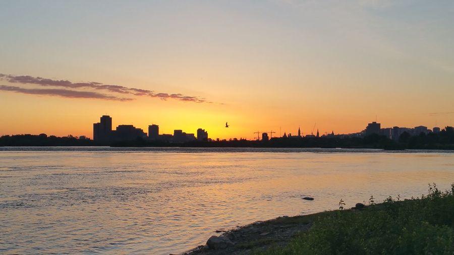Ottawa Ottawa River  Ottawa Parliament Gatineau Quebec Nature Sunrise