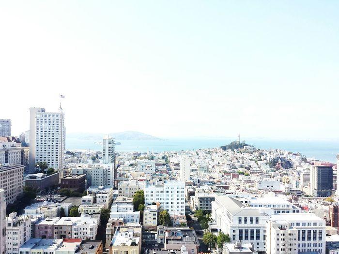 Feel The Journey Original Experiences San Francisco San Francisco Bay Sky Bay Area Sky And Sea San Francisco, California Skyline City Seaside Landscape Cityscape Buildings