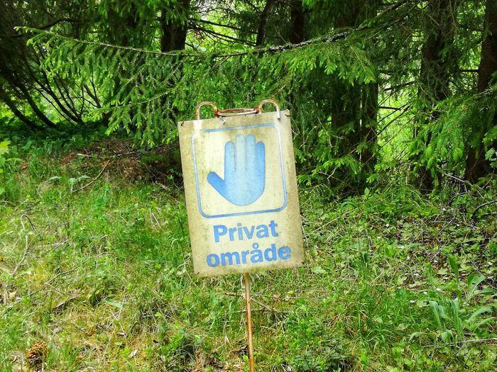 Privatgelände Hinweisschild Makaryd Communication Day Grass Green Color Growth Hinweis Nature No People Outdoors Privat Privatgelände Schweden Text Tree Verbot Verbotsschild