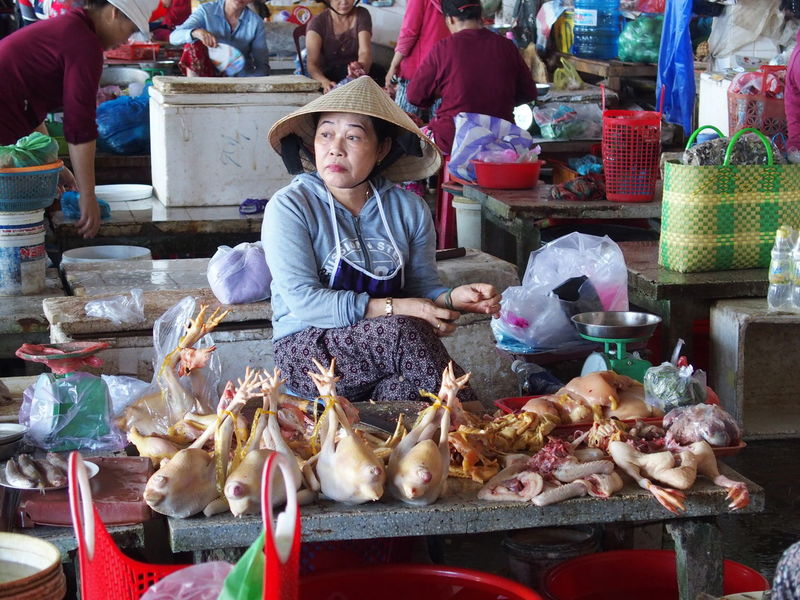 Trip in Hoi An, Vietnam August 2015. Chiken Chinese Hat First Eyeem Photo Food Food And Drink For Sale Freshness Hoi An Hoi An, Vietnam Market Market Market Stall Sale Sitting Stall Tourism Vietnam Women