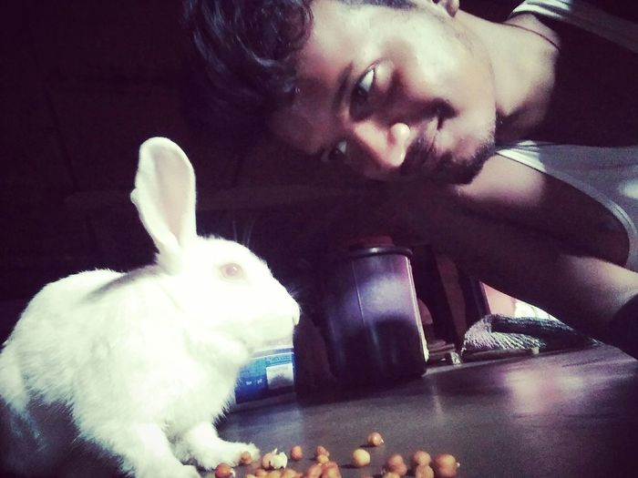Animal_snapturez 🐰