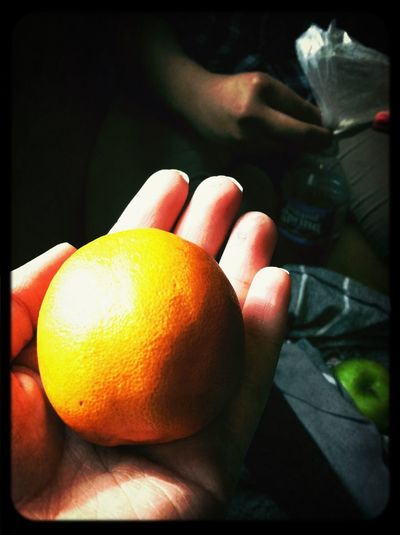 Tiny Orange My Friend Got Me