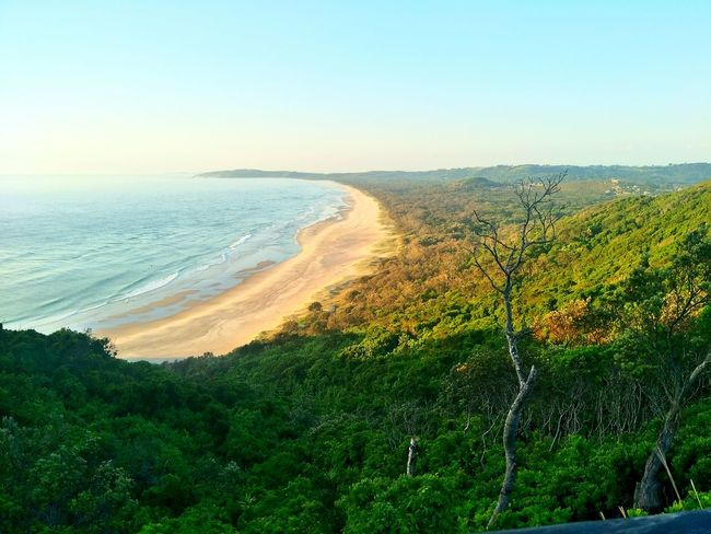 Byron bay Nature Beauty In Nature Scenics Field Outdoors Landscape Growth