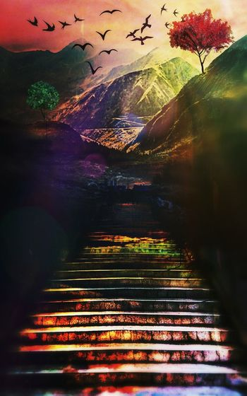 My Art, My Fantasy.. Surrealism And Fantasy Art ColorfulStairs & Shadows Double Exposure Naturelover Nature Deepestemotions Eeyemhongkong