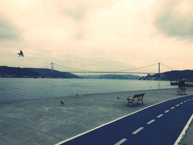 Istanbul Boğaz Köprüsü Sonbahar First Eyeem Photo