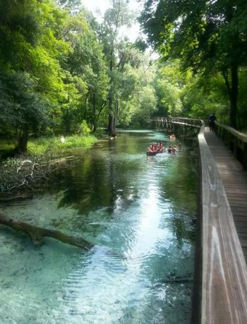 Water Florida Blue Springs Swimmimg