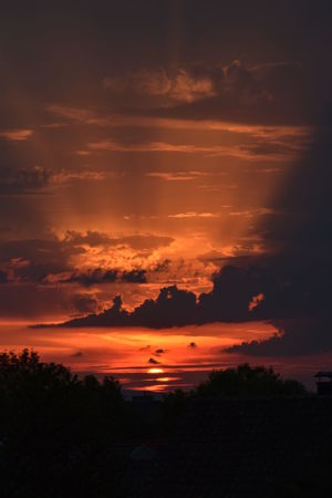 Beauty In Nature Cloud - Sky Dramatic Sky Environment Idyllic Land Landscape Majestic Nature No People Non-urban Scene Orange Color Outdoors Romantic Sky Scenics - Nature Silhouette Sky Sunset Tranquil Scene Tranquility Tree