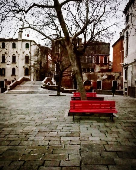 red benches Light And Shadow Stepbystep Walking Around Welcome To Italy Italy Venice Benches Tree Calli E Campielli Building Exterior Architecture Built Structure Tree Outdoors Street City