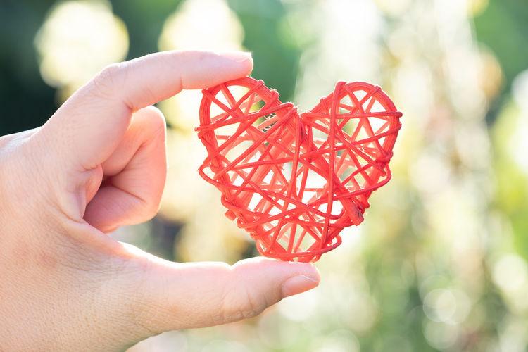 hand hold heart shape in garden