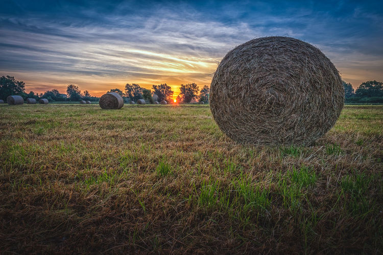 Hay bales on a meadow near Hannover Haybales  Plant Field Land Sky Grass Tranquil Scene Bale  Beauty In Nature Tranquility Scenics - Nature Environment Hay Landscape Nature Cloud - Sky No People Agriculture Sunset Farm Rural Scene Outdoors EyeEm Nature Lover Sunrise Summertime