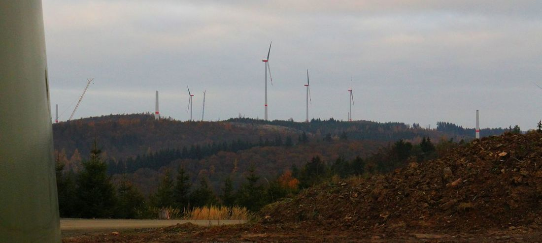Alternative Energy Herbst Hessen Hinterland Nature No People November Outdoors Sky Technik  Tree Wind Energy Windräder