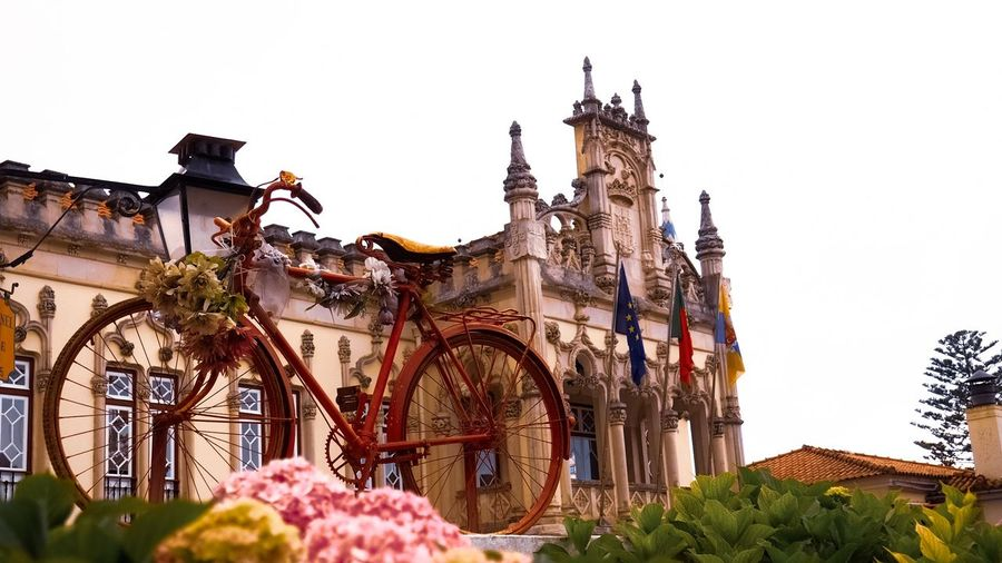 Pastel of colours in front of the city hall Old Town Old Buildings Street_vision Olympuskameras Omdem10mkii EyeEmNewHere Eyeemphotography EyeEm Selects Travel Travelphotography Sintra Portugal Colorful Bike Vintage Bicycles City Hall City Flower Sky Architecture