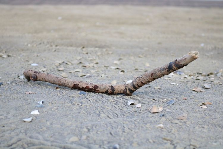 stick on the