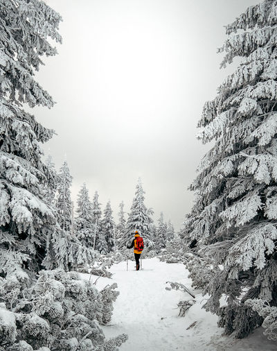 Man standing on snow amidst trees during winter