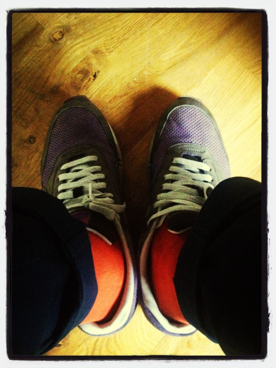 shoe, human leg, low section, pair, personal perspective, canvas shoe, high angle view, one person, standing, men, indoors, human body part, real people, close-up, day